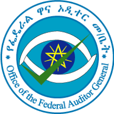 federal Auditor